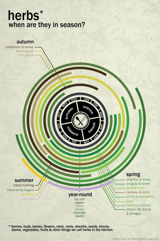 """""""Kitchen 101: Fruits, Vegetables & Herbs""""; when are herbs in season? infographic"""