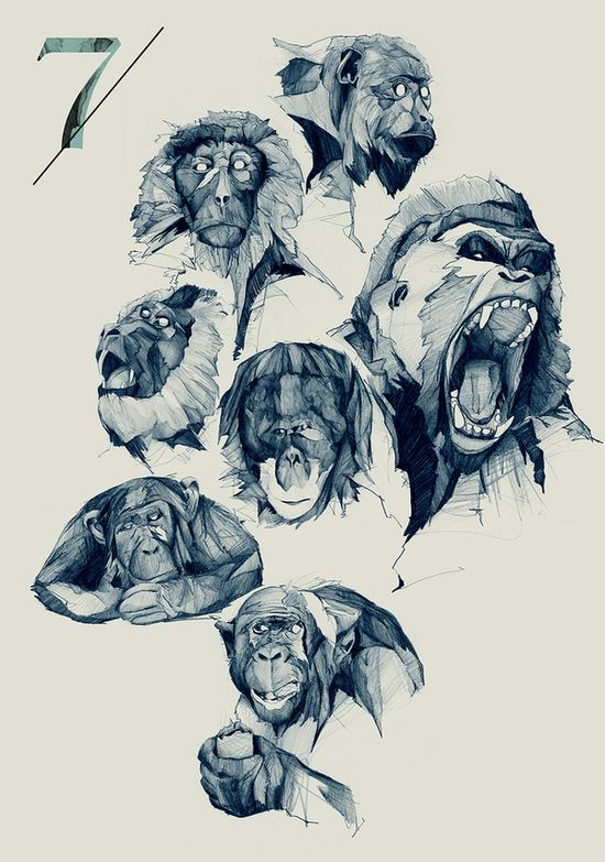 Seven monkeys - By Philipp Zurmoehle Find more at www.facebook.com/... if you're looking for: #art #character #design #model #sheet #illustration #best #concept #animation #drawing #archive #library #reference #anatomy #traditional #draw #development #artist #how #to #tutorial