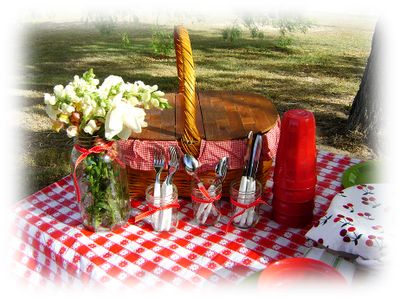 checkered picnic...