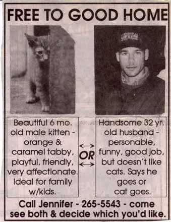 Funny Bitch Ads