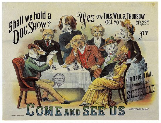 Shall we hold a dog show? #vintage #Victorian #ads #dogs