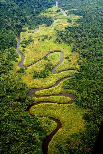 Meandering River in the Congo, River Zaire, Africa