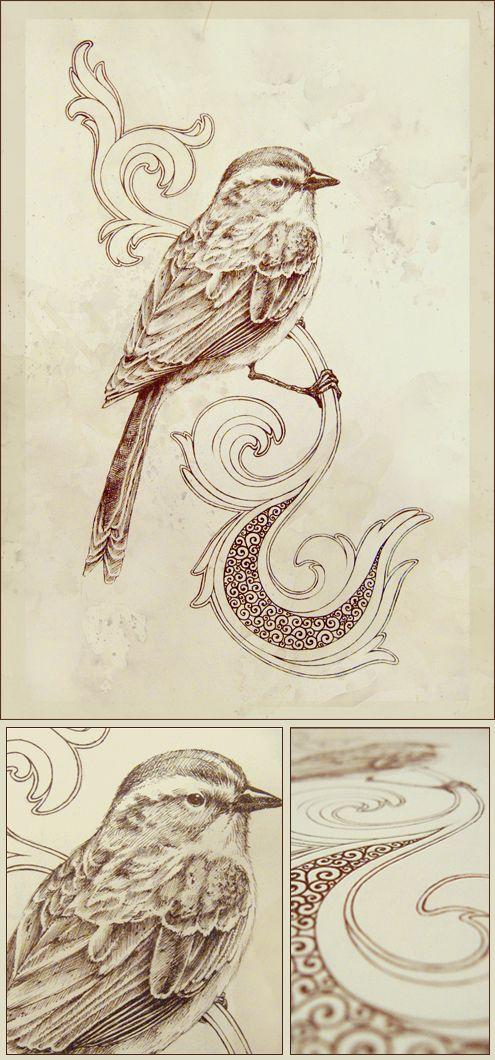 ~ Songbirds - Teagan White