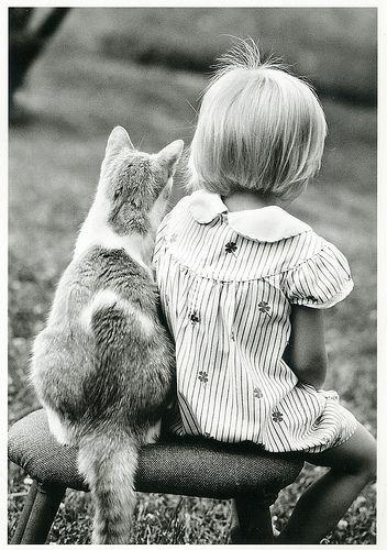 Girls best friend- cats