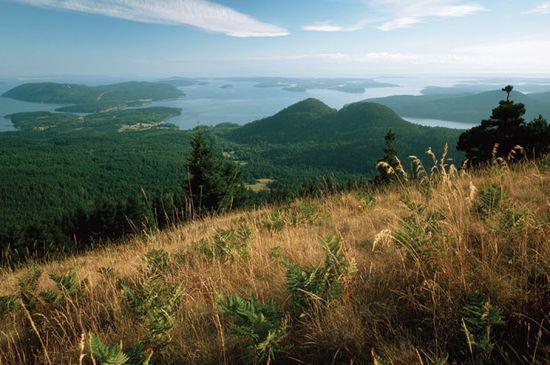 Mount Constitution View