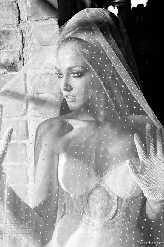 Sophie veil. Galia Lahav.