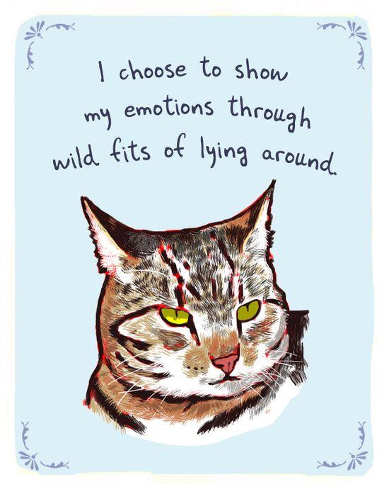 HA! cats...