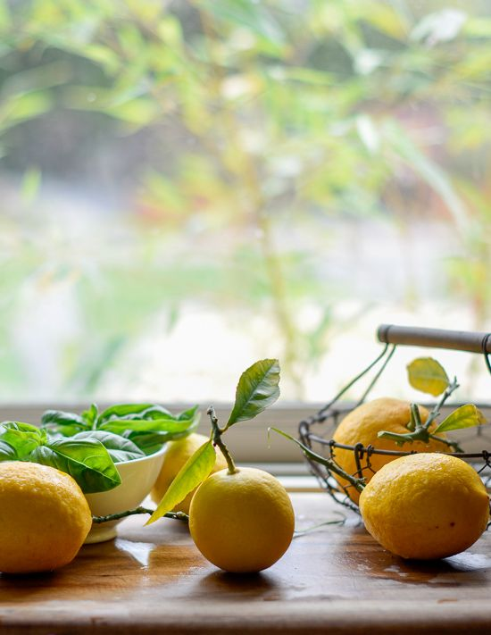 For the Love of Meyer Lemons- a video and lemon giveaway
