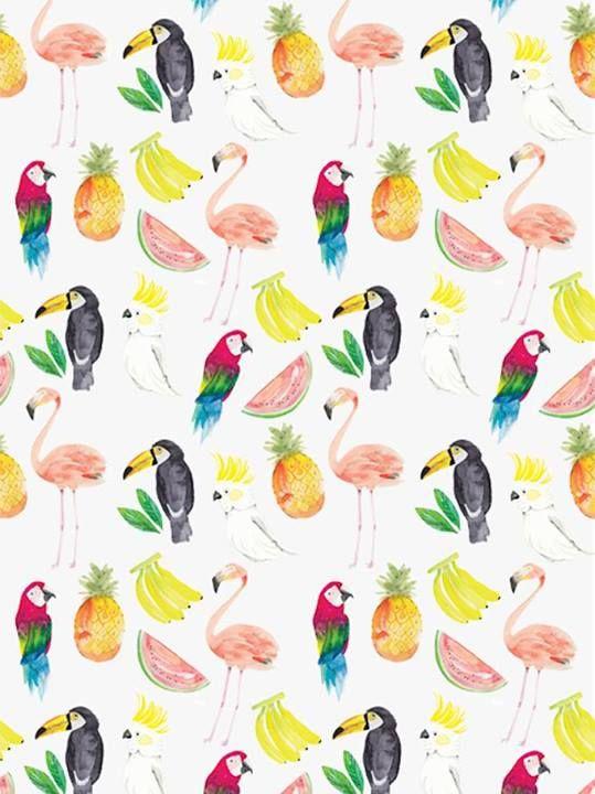 flamingo/toucan
