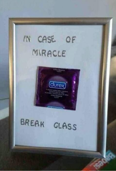 Gallery: 29 funny photos to get you through the day