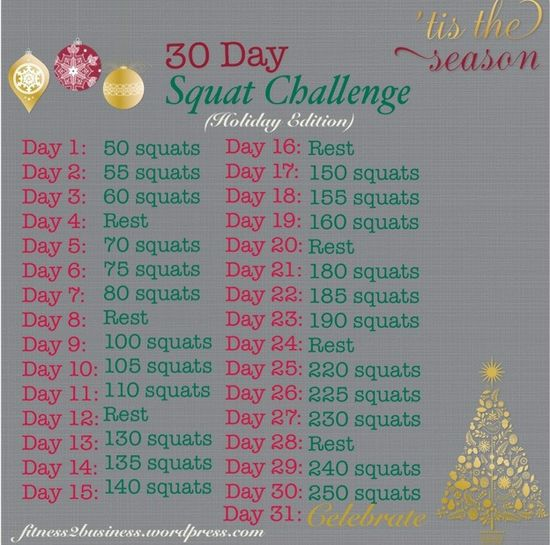 30 Day Squat Challenge - Holiday Edition!  www.fitness2busin...  #workouts #exercises #fitness #health #blog #blogger #janaleefitness