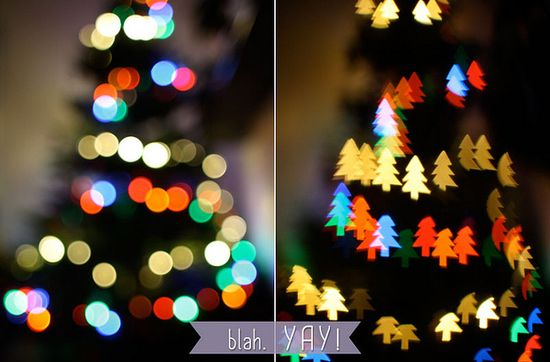 Bokeh Photography!