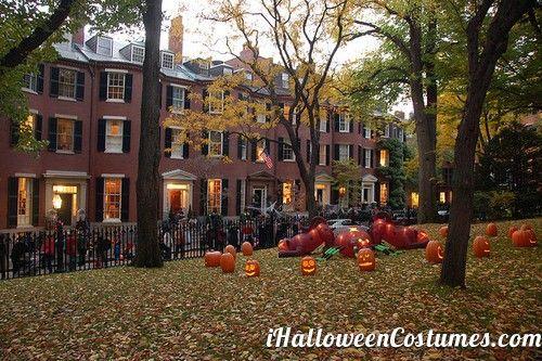 garden decoration - Halloween Costumes 2013