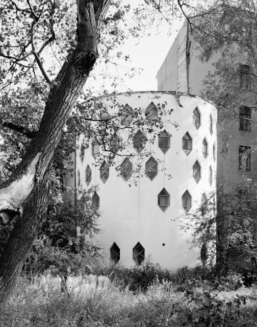 honeycomb house near tree