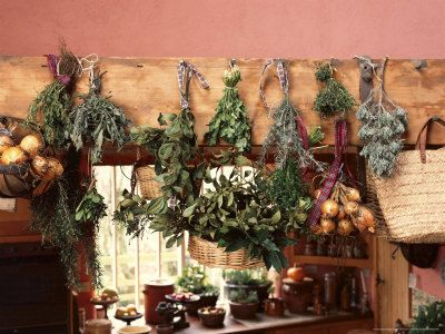 Drying herbs from the garden.