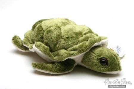 Sea Turtle Stuffed Animal