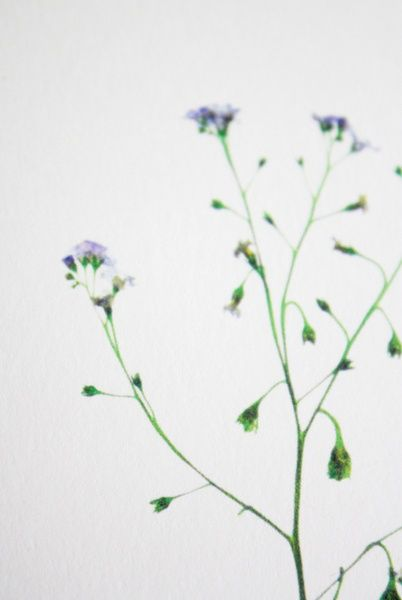 handmade flower prints by