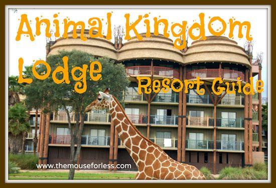 Animal Kingdom Lodge Resort Guide from themouseforless.com #AnimalKingdom #Travel #Disney #DisneyWorld