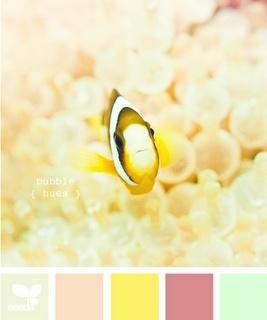 bubble hues