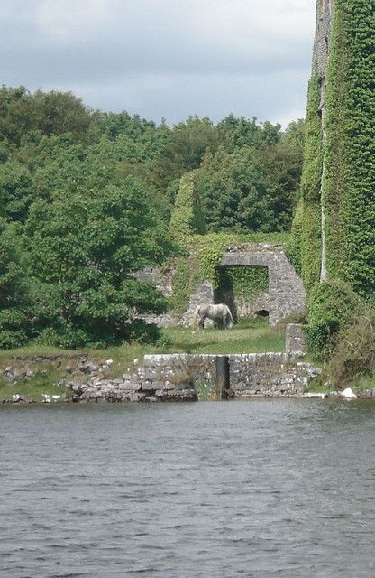 Pooka by Castle #galway #ireland