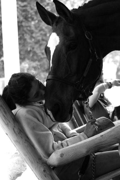 ?Black Horse