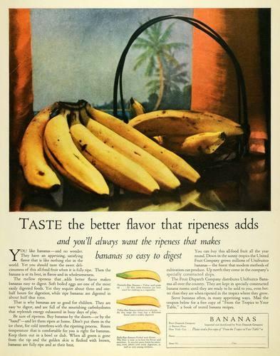 1926 Ad Bananas Tropical Fruit Dispatch Health Food Original Advertising