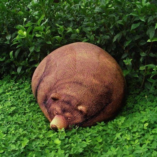 Big sleeping grizzly bear bean bag.
