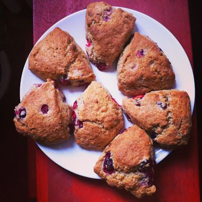 homemade cranberry scones, fresh from the oven