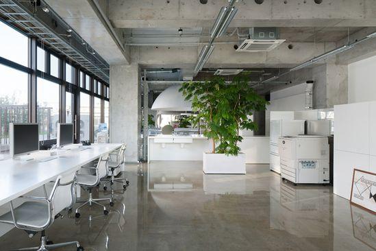 Mr. Design Office