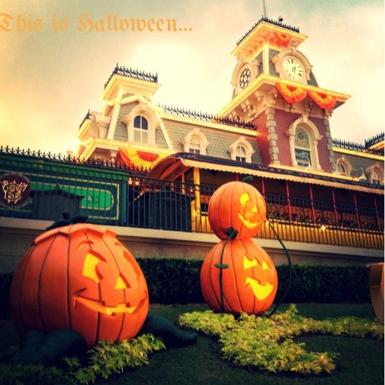 Fall fun at Walt Disney World.