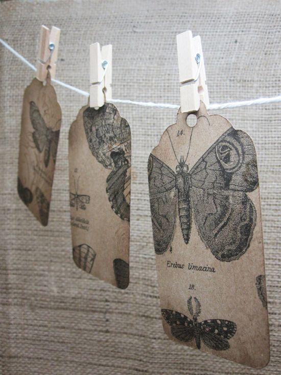 Butterfly Kraft