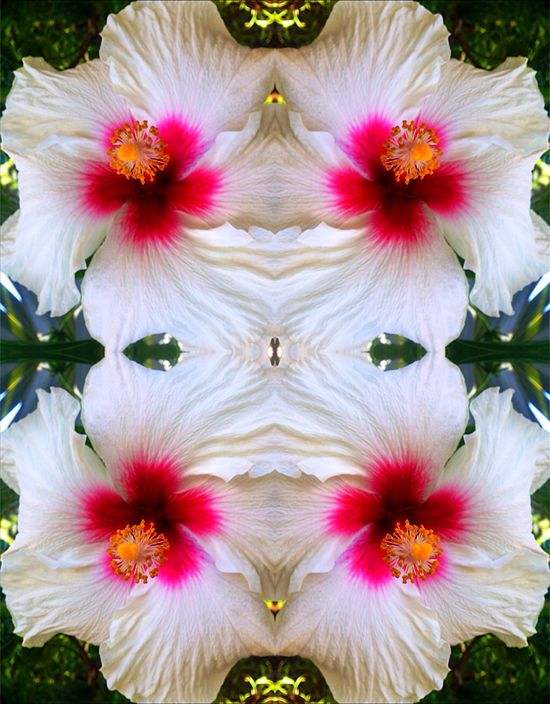 Inner Beauty - Digit