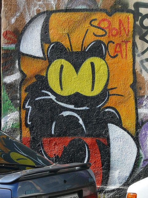 Ljubljana graffiti - Sqon cat