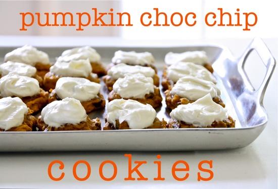 pumpkin chocolate chip cookies!