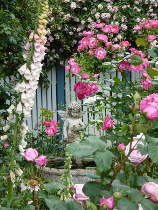 Gotta love hollyhocks, foxglove and the angel birdbath. :)