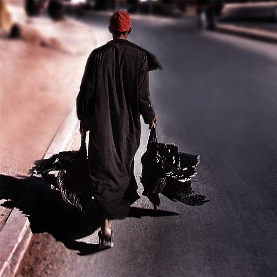 Travel photos {Part 40} Morocco