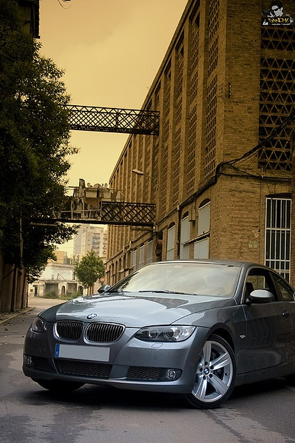 BMW 335i---the car I currently own