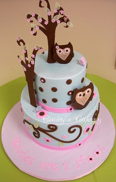 Baby Shower Ideas for girl with owl theme