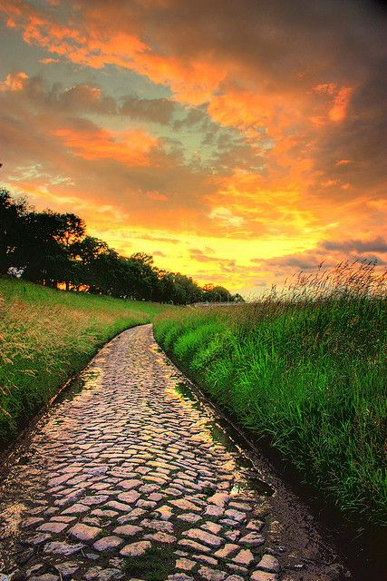 Yellow Sunset over cobblestone path