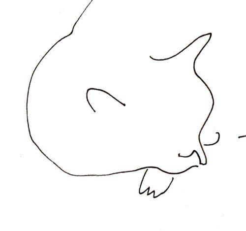 Cat Nap by jamieshelman