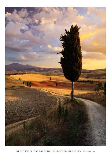 Val d'Orcia, Tuscany, Italy.   (roads)
