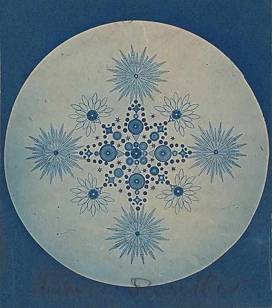 Attributed to Julius Wiesner, Frustules of Diatoms, 1870