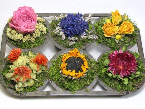 Dried Floral Arrangement,   Vintage Muffin Tin $38.00  #driedfloral  #driedflowers