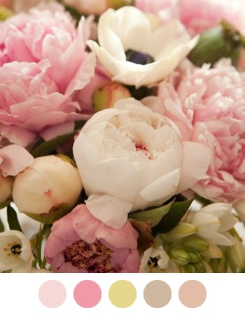 Pretty Pastel Flowers x www.wisteria-aven...
