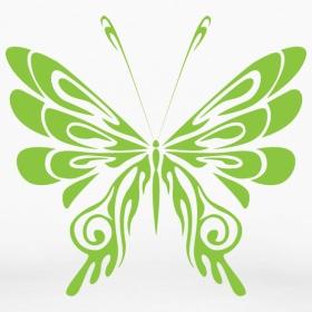 butterfly tattoo---