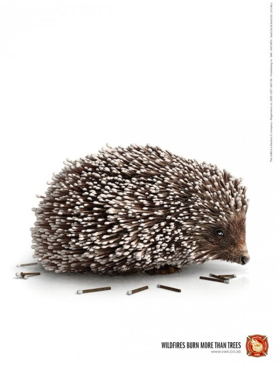 """""""Wildfires burn more than trees."""" Beautifully simple and effective print ad."""
