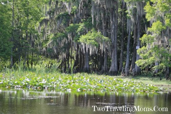 A Little Adventure with Boggy Creek Airboat Rides #Travel #2MomsTravel