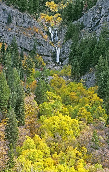 ? Fall Color and Waterfalls in Provo Canyon - Utah