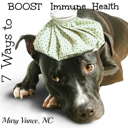 7 Ways to Boost Immune #health guide #health care #better health naturally