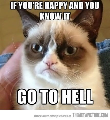 Grumpy cat speaks from the heart...